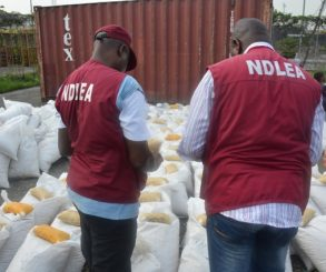 NDLEA Intercepts 21.9kg Of Cocaine In Abuja Airport